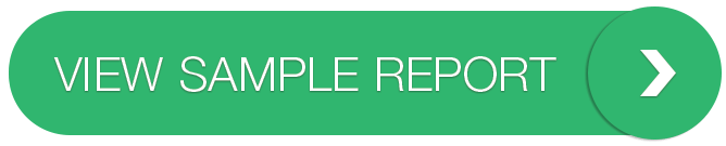 Beispielbericht anzeigen